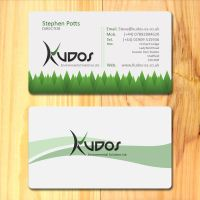 Kudos ES Business cards by SolidSilver