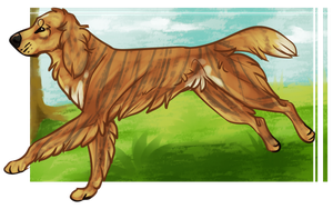 Completed YDH :: Wilty by Little-Bird-Kennel