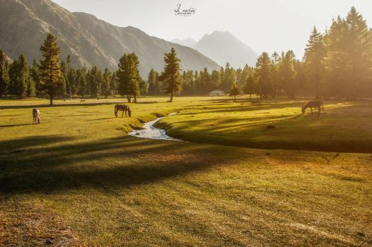 Morning Gory by aliawais