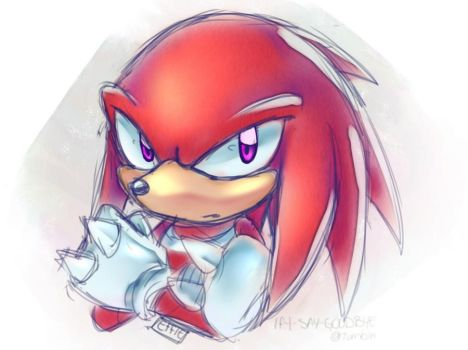 Knuckles the echidna - [Grumpy#2] by Effieart