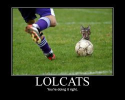 lolcats motivational poster by loliichan