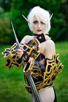 Dark Elf - Lineage II by PamelaColnaghi