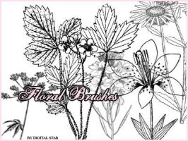 Floral Brushes by digitalstar