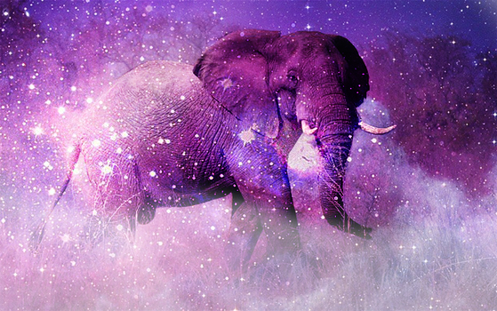 galaxy elephant by aetheriallight - photo #2