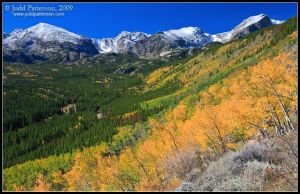 Fall Colors by juddpatterson