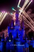 Magic Kingdom Night show by CRWithers