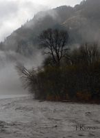 The Elwha River in the Mist by TRunna