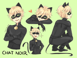Chat Noir by littleevilaccident