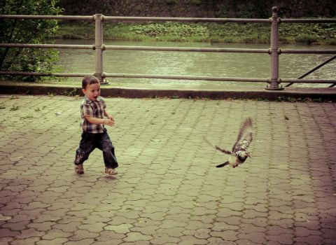 Child and dove by zhornik
