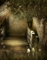 Woody path backgrounds by moonchild-lj-stock