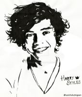 Harry Styles One Direction by ludvigsen
