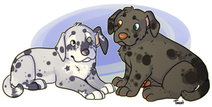 Puppies by Toucat