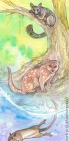 ACEO Cards: Tasmanian Natives by MoonsongWolf