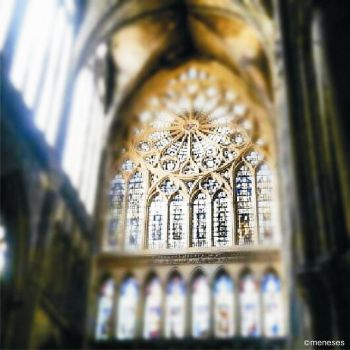 cathedrale by menesesxio
