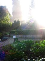 Morning Rays Again by Metatronis