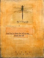 Dragonfly of Eight by SethFitts