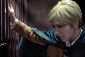 SNK: Solemnity by SkywingKnights