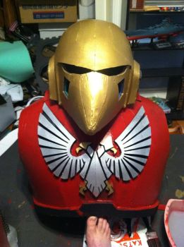 Updated torso and helmet by sangaire