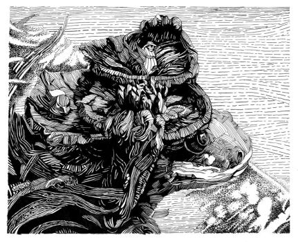 Pen and Ink: Frog Lawn Ornamen by spidol