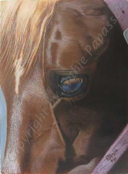 'Kee' in Acrylic by KMAP3156