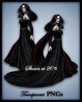 Gothic Rose-Figure Stock by shd-stock