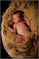 Basket Baby by cosfrog