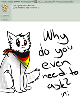 Ask 7: ... by Ask-Prussia-Neko