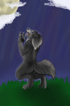 +Comm- Danwy- Wolf Moon+ by angelwolf