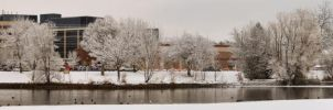 Winter Pond in the City by ShawnHenry