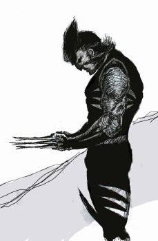wolverine 2 by cloudkev