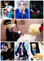 2011 cosplay summary by 18skylark