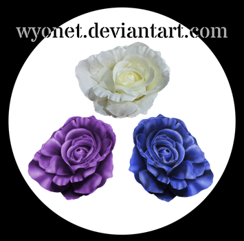 Roses - Painting look by Wyonet