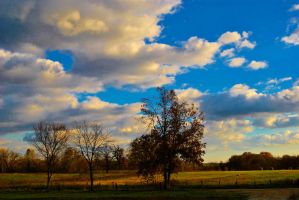 Cotton Ball Clouds by sweetz76