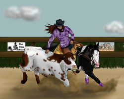 Player at Hickory Ridge's 2012 Western Classic RCH by angry-horse-for-life