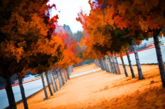 Autumn Passage by Macmaker101