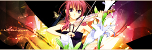 Color Banner by Misa-chii