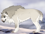 Hunter of the Forgotten 26387 by TotemSpirit