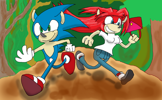 Aoko and Sonic for TheGuyWhoLikesSonic by TealSpace