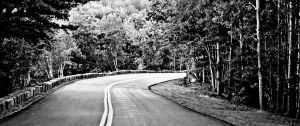 The Road- Black and White by musicity