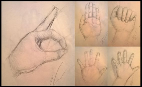 Hand Study by Shogun95