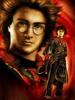 Harry Potter by Eruadan