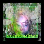 MushroomBrain Wow Signal from inner Space by MushroomBrain